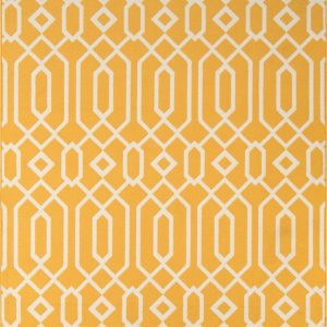 BAJA-03 Yellow